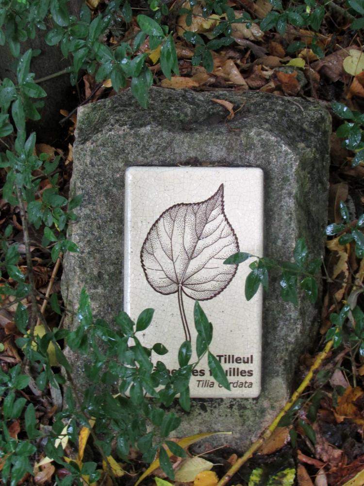 Jardin_naturel1