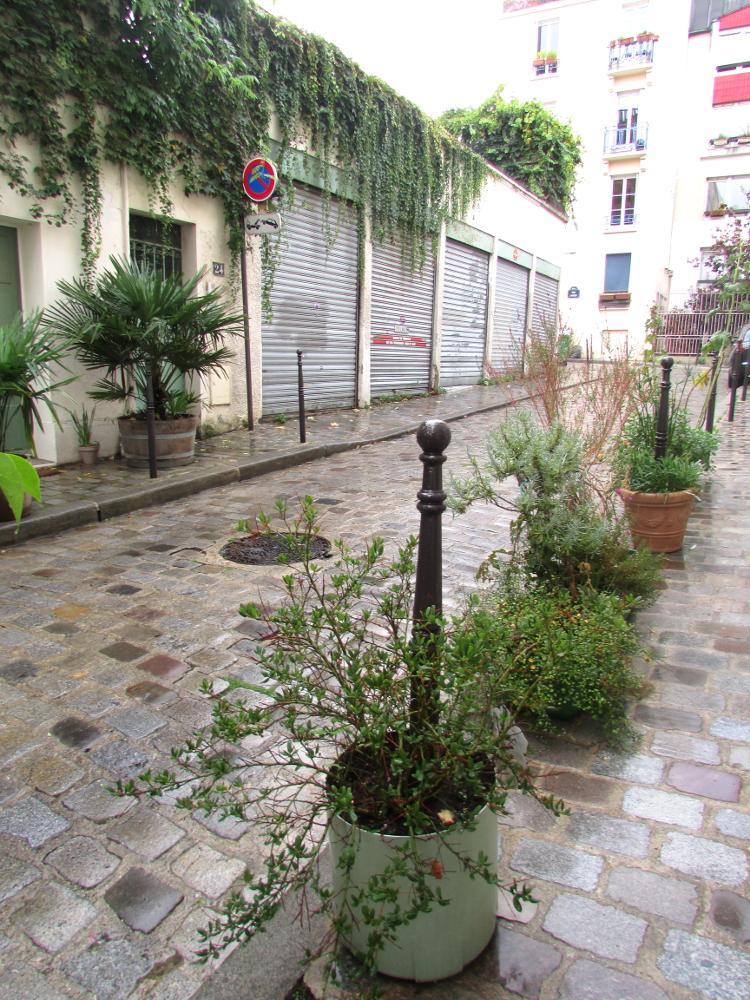 Jardin_naturel13