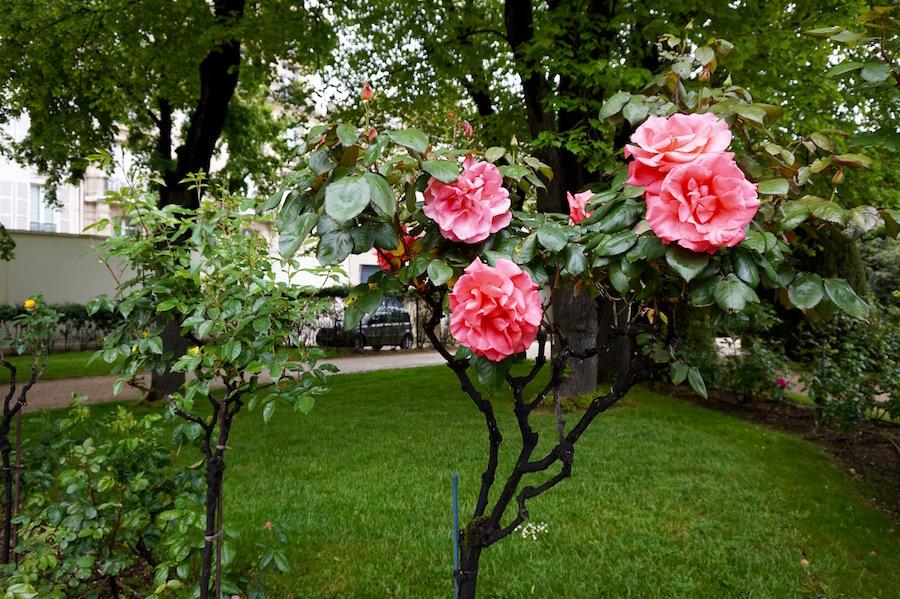 1 - Nocturne Rodin