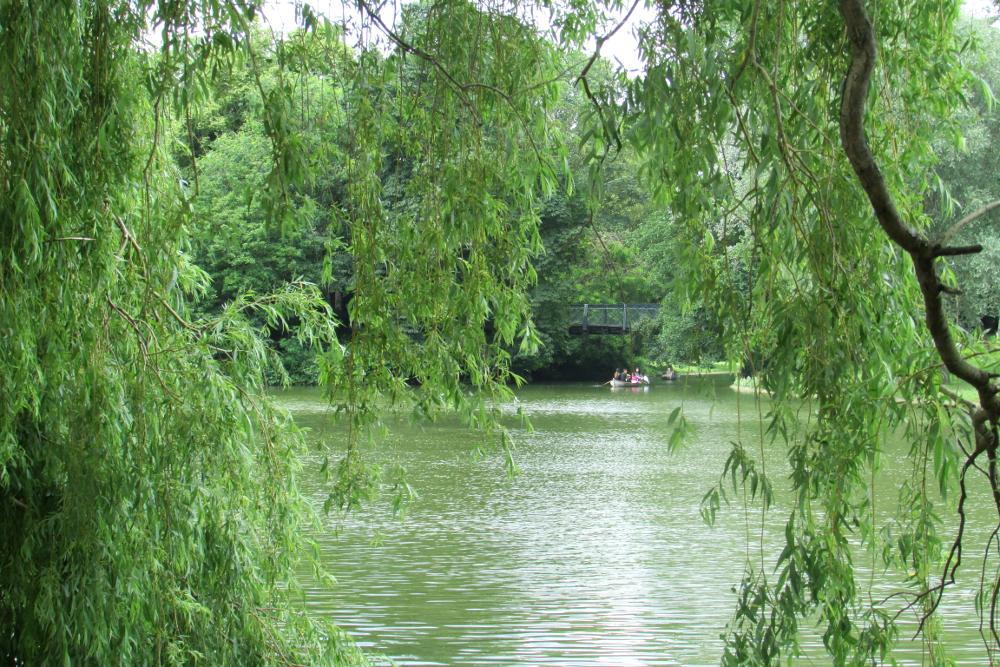 lac_bois_vincennes-1